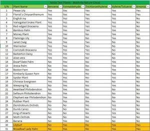 NASA Air Purifying Plants List - Mashrita.com