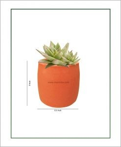 Ceramic Round Succulents Pot Pastel Corel 3 inch