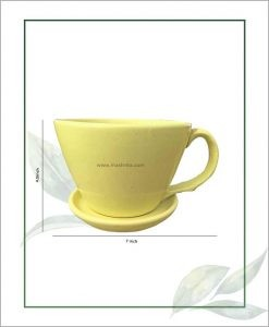 Ceramic Cup with Tray Table Top Planter Pastel Green 7 inch