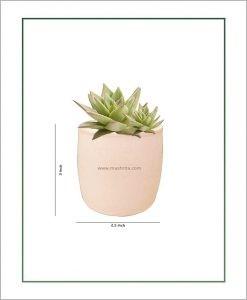 Ceramic Round Succulents Pot Pastel Pink 3 inch