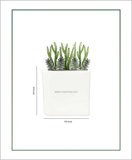 Ceramic Glazed Square Table Top Planter White (4.5 inch)