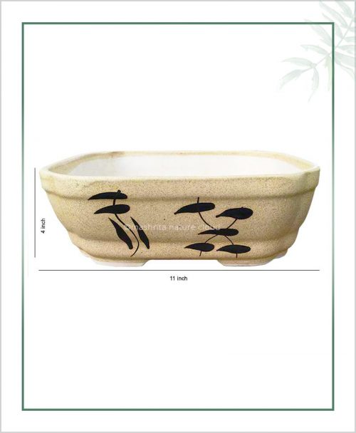 Ceramic Bonsai Tray Planter - Matt Semi Square 11 inch
