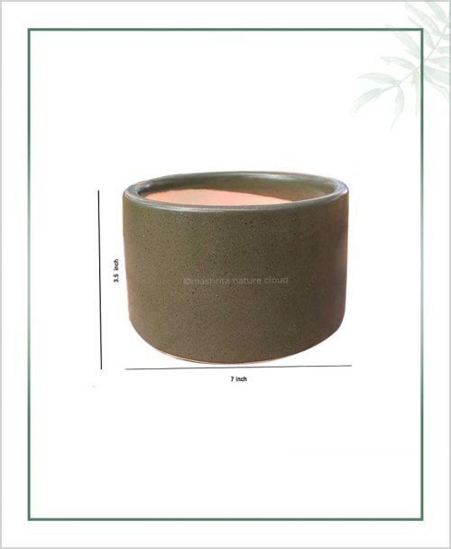 Ceramic-Bonsai-Tray-Planter-Olive-Round-7-inch