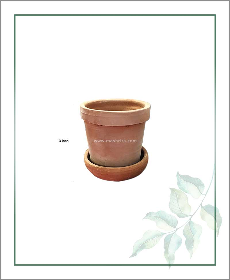 Terracotta 3 inch Pot with Tray in Terracotta Color