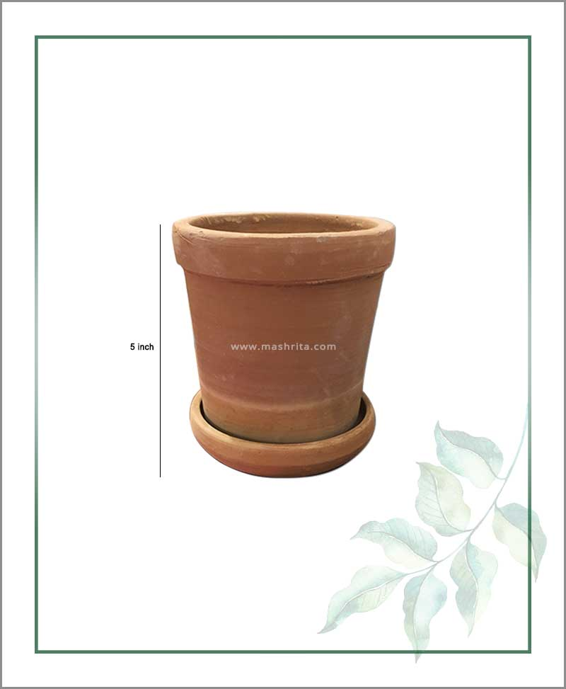 Buy Terracotta 5 inch Pot with Tray in Terracotta Color