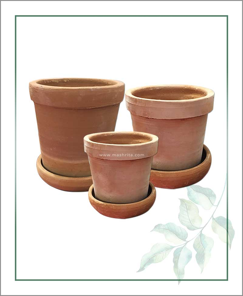 Buy Set of 3 Terracotta Table Top Planters with Tray