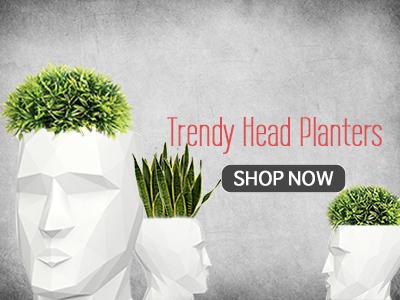 Shop Head Planters India