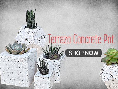 Shop Geometric Concrete Planters India