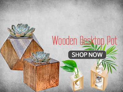 Shop Wood Planters India