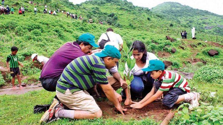 Corporate Tree Plantation Services Delhi, Gurugram, Noida, All over India