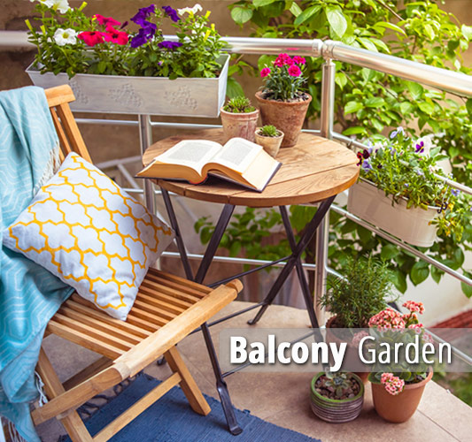 Balcony Garden Delhi Gurgaon Noida