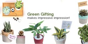 Corporate Green Gifting