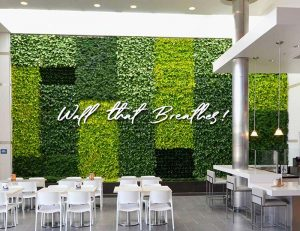 Vertical Garden Green Wall Delhi Gurgaon Noida India