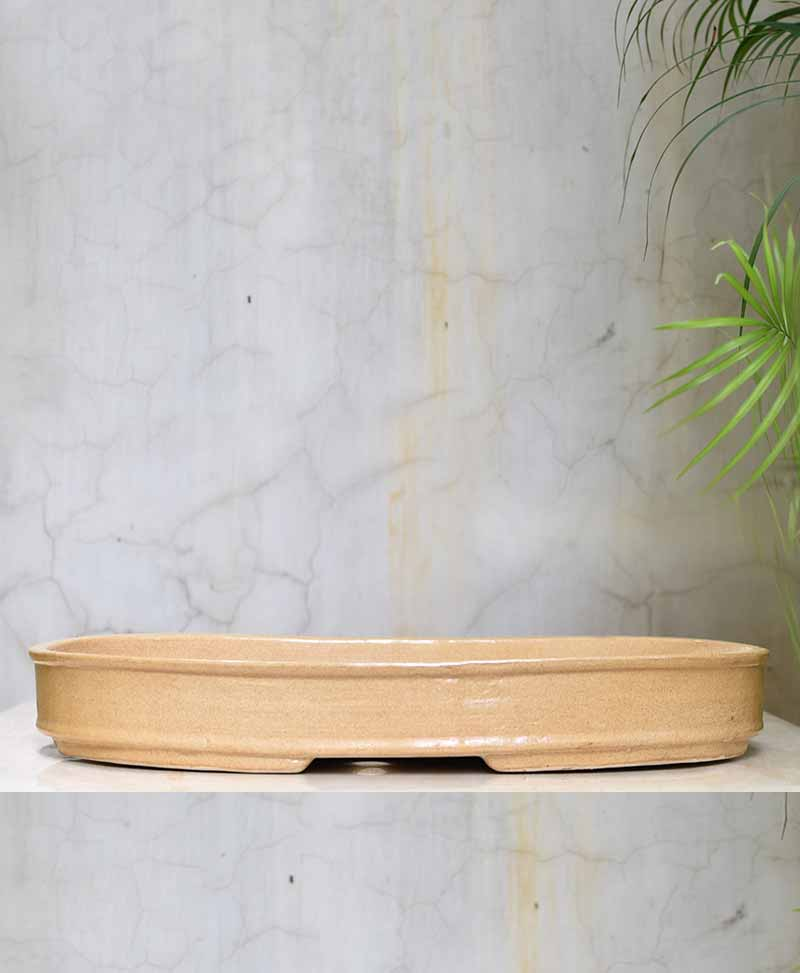 Material : Ceramic, hand crafted Pot Type : Bonsai Tray Pot Size : Length 18 inch, height 2 inch, width 12 inch approx