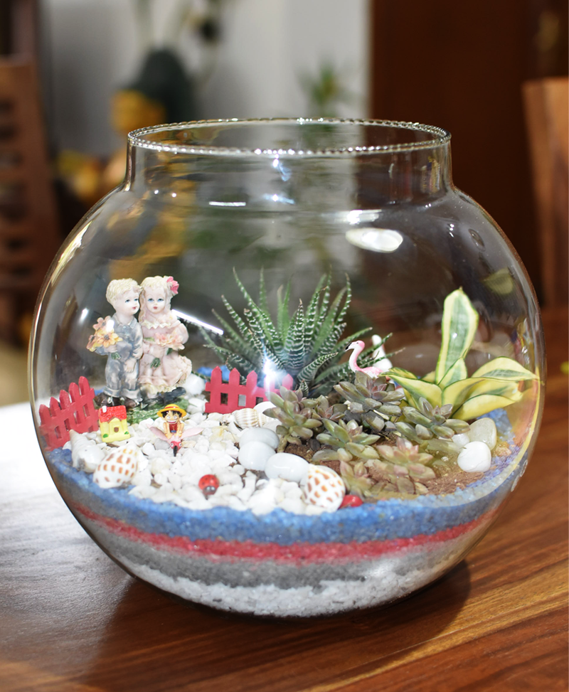 Terrarium Bowl Round with Neck 30cm (12 inch approx)