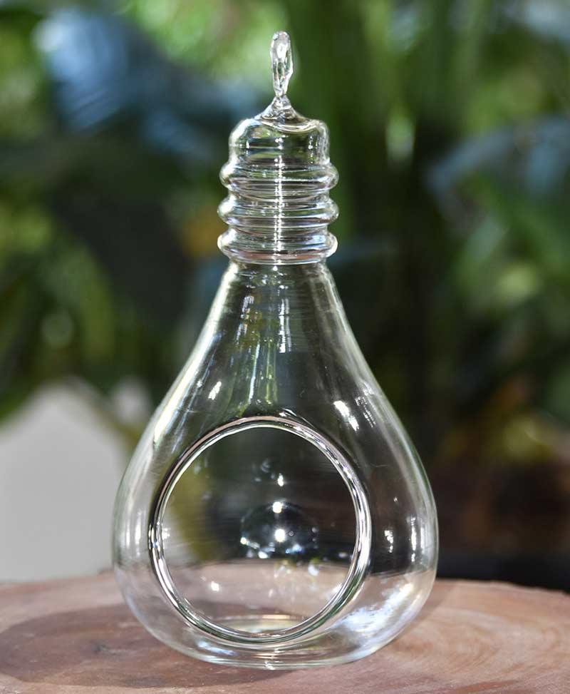 Hanging Terrarium Bulb 17cm