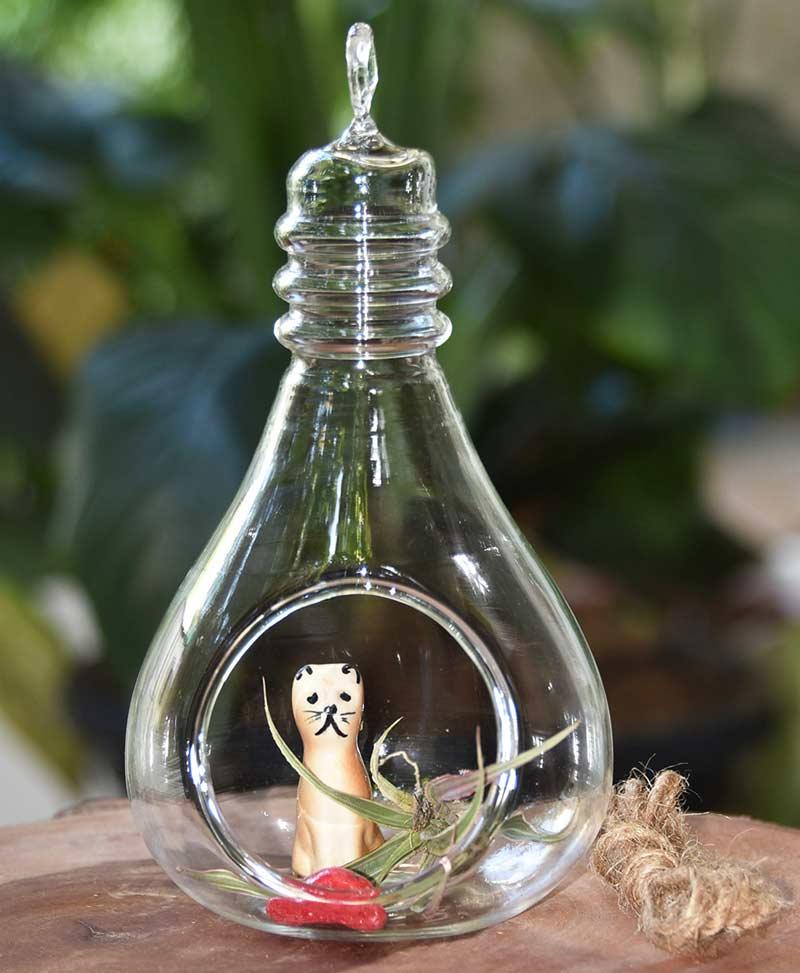 Hanging Terrarium Bulb 17cm 2