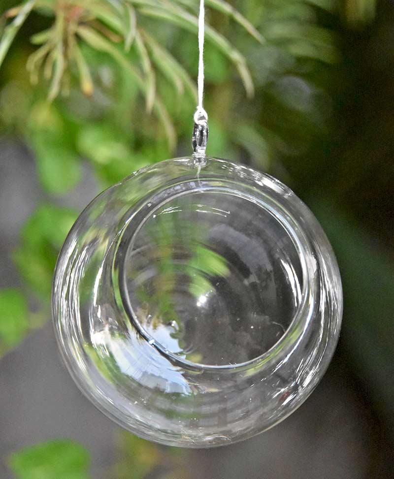 Orb Hanging Terrarium Round 12cm