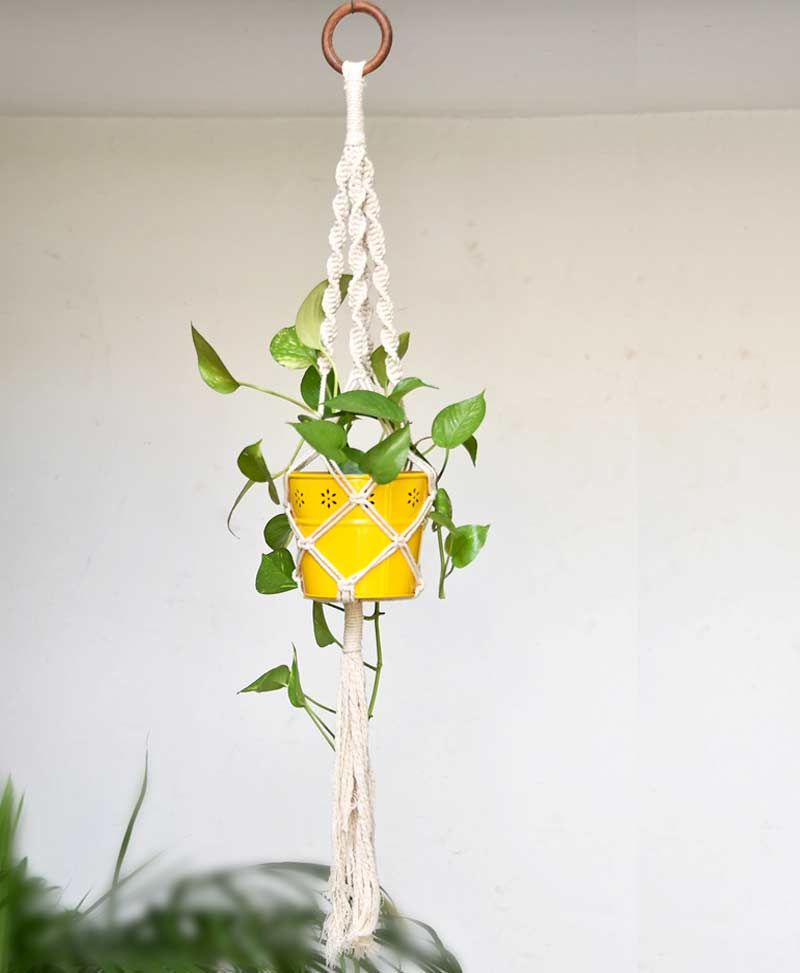 Macrame Plant Hanger Type 1