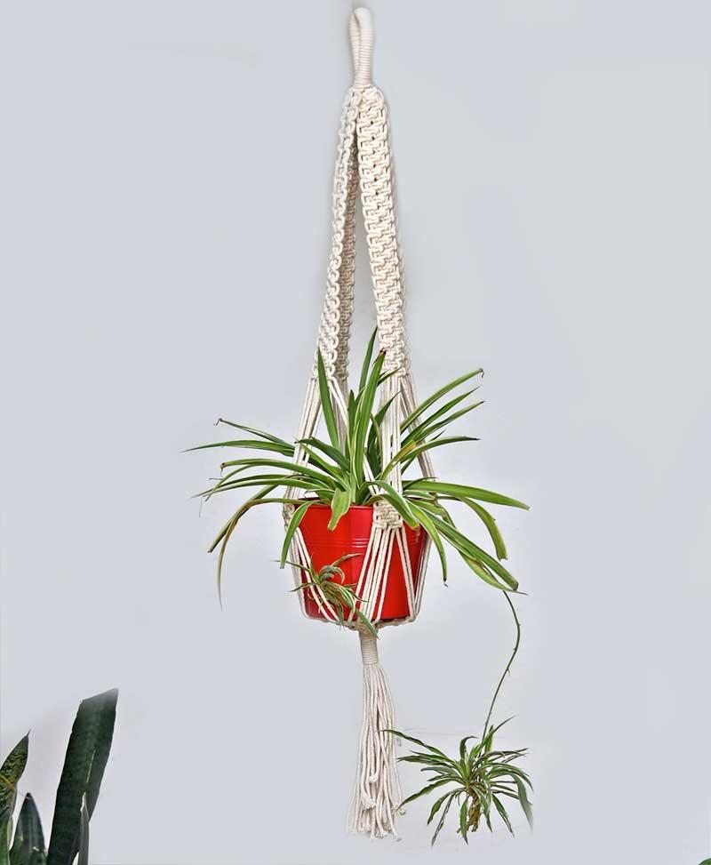 Macrame Plant Hanger Type 6