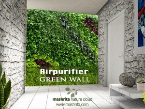 air purifier green wall