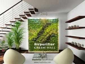 Air purifier green wall indoors