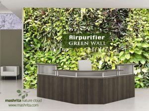 Air purifier green wall office