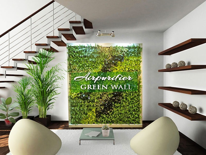 Air purifier green wall indoors