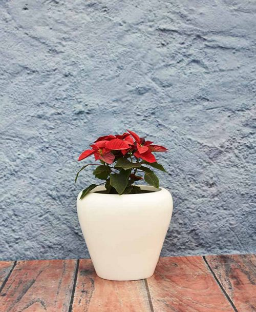 Apple Shape Fiber Planter 12 inch