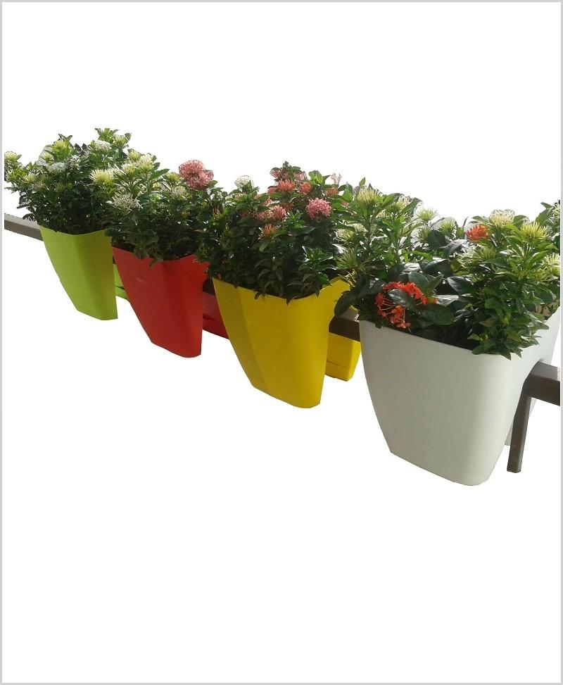 Buy Plastic 10 inch Railing Planter (Yellow Color)