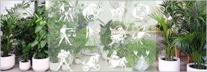 Best zodiac plants - find lucky plant for your rashi zodiac sign