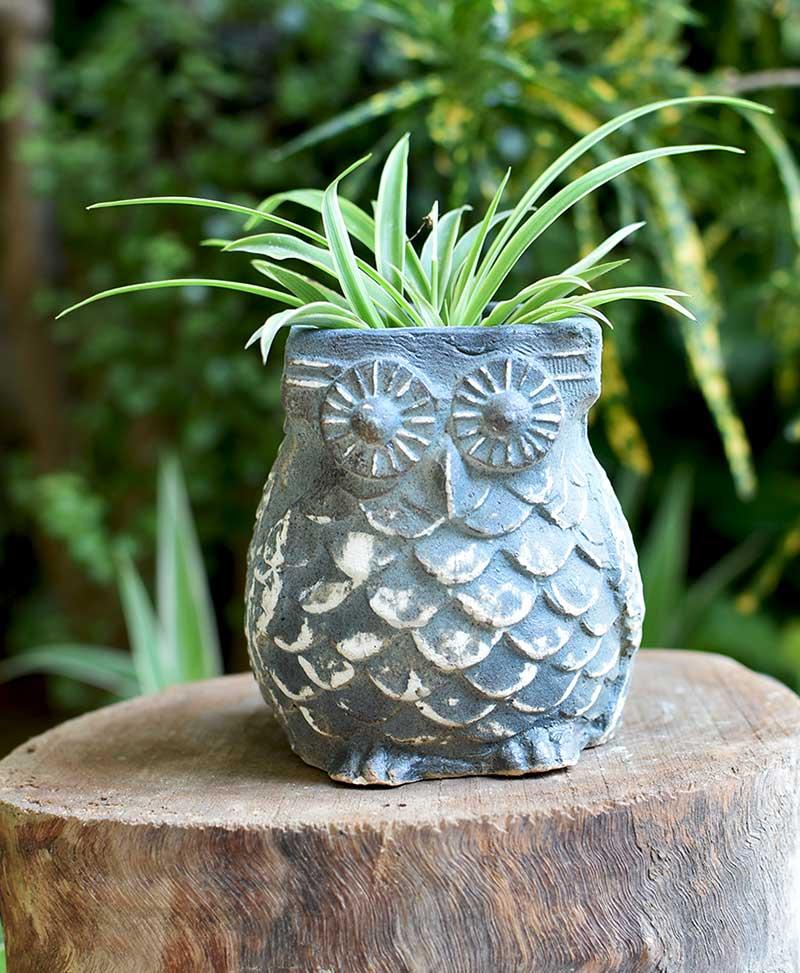 Ceramic Designer Owl Planter Blue Color 4 inch