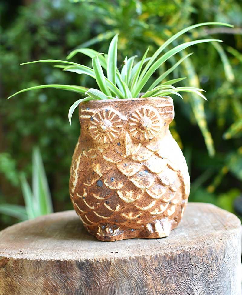Ceramic Designer Owl Planter Brown Color 4 inch