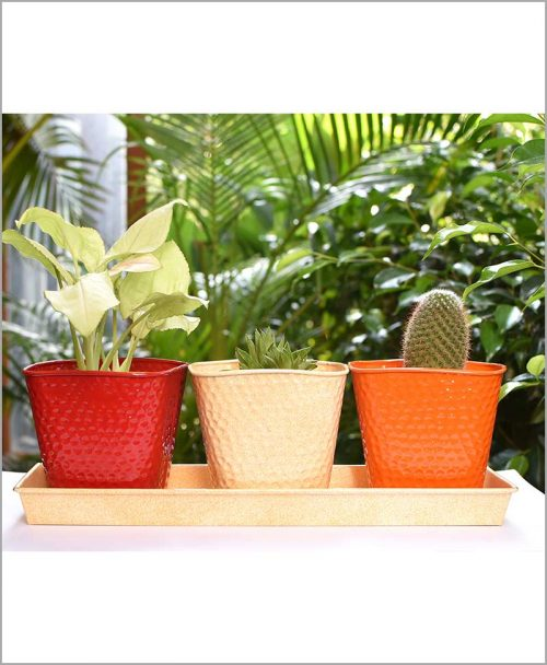 Buy Metal 3 Planters Set with Tray Red