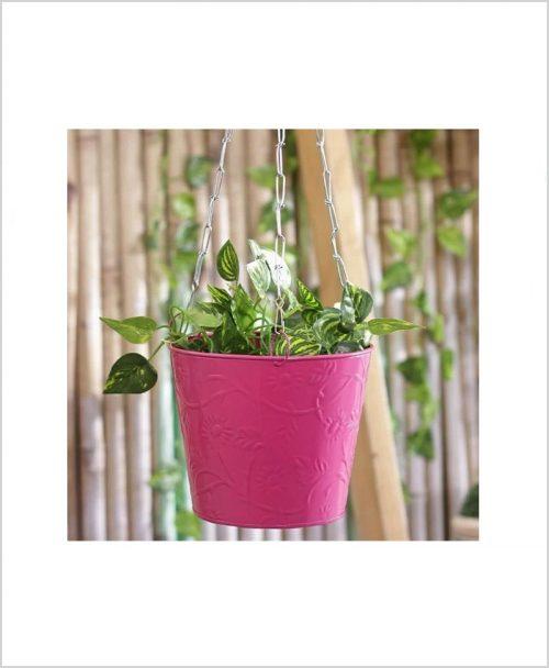 Buy Metal Hanging Bucket Planter Pink