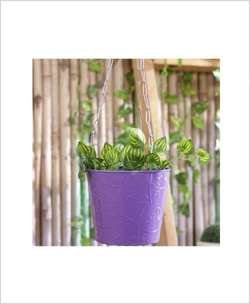 Buy Metal Hanging Bucket Planter Puple