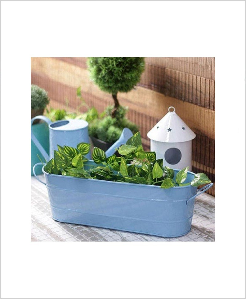 Buy Metal Oval Planter Big Blue