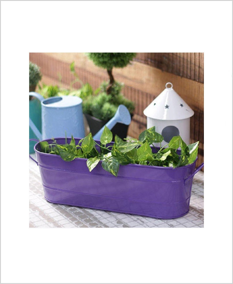 Buy Metal Oval Planter Big Purple