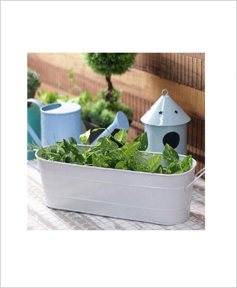 Buy Metal Oval Planter Big White