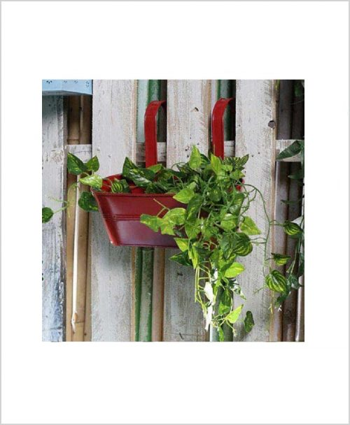 Buy Metal Oval Railing Planter Medium Red