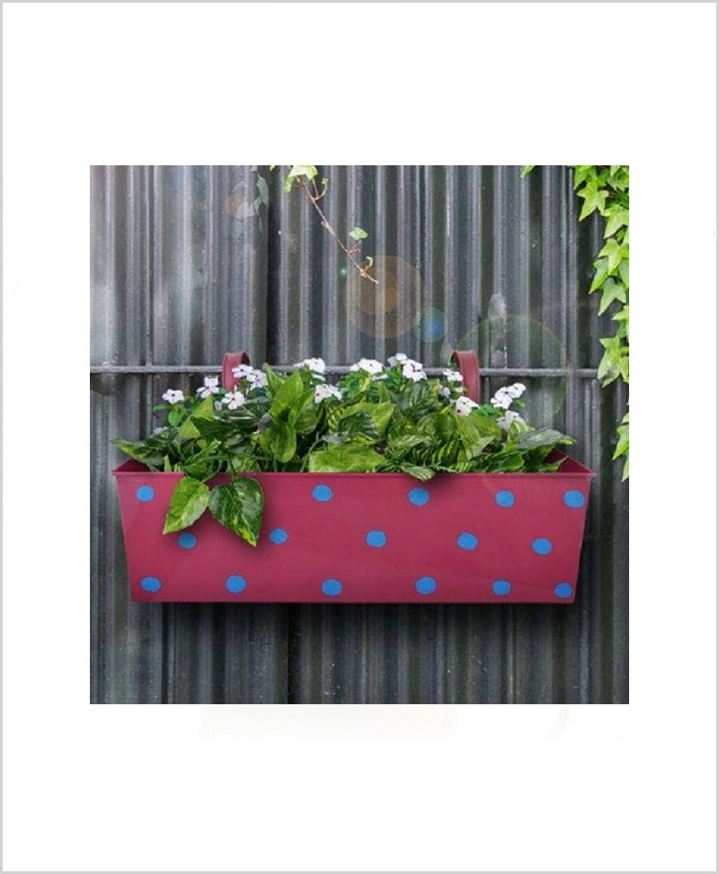 Buy Metal Rectangular Polka Planter Pink