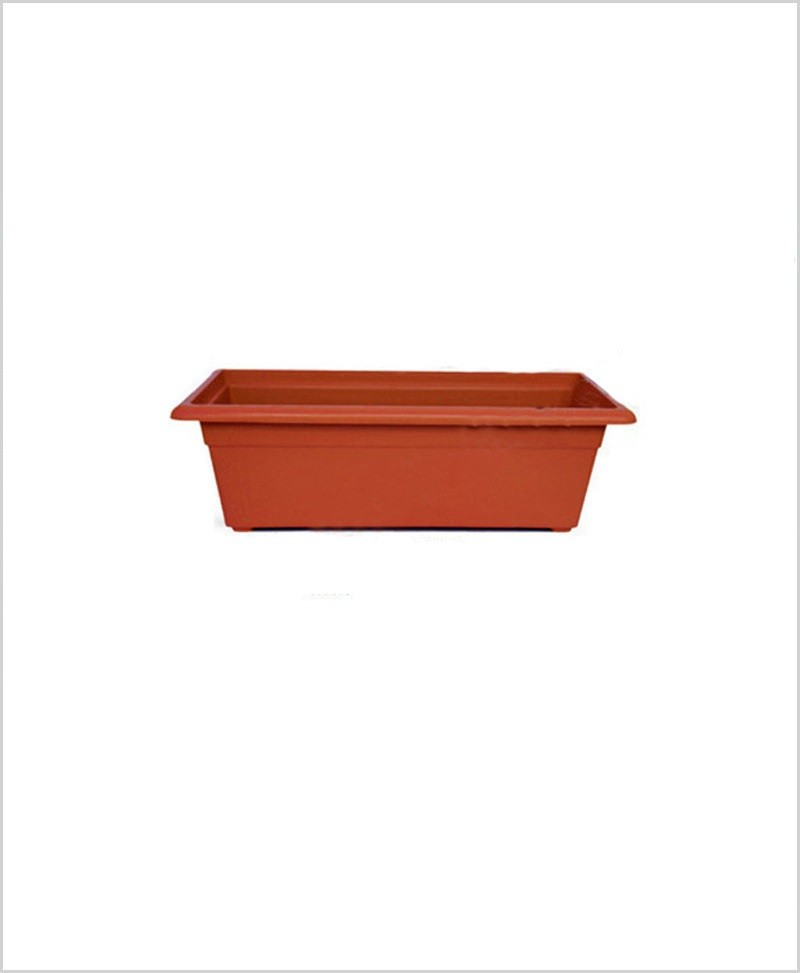 Buy Plastic Rectangular Planter (Terracotta Color)