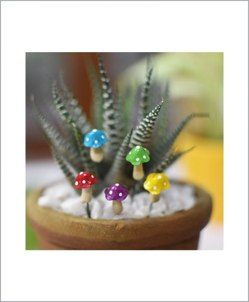 Buy-Set-of-05-Color-Mushroom-Miniature
