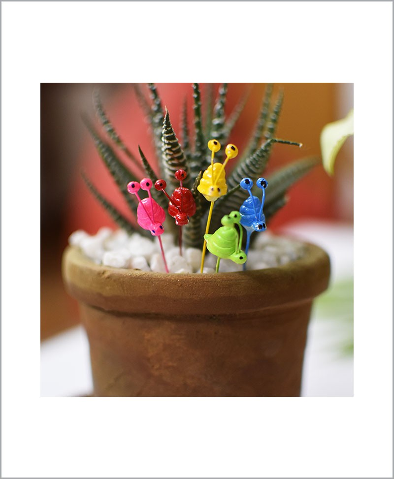 Garden Miniature Snails (Set of 5 Colored Snails)