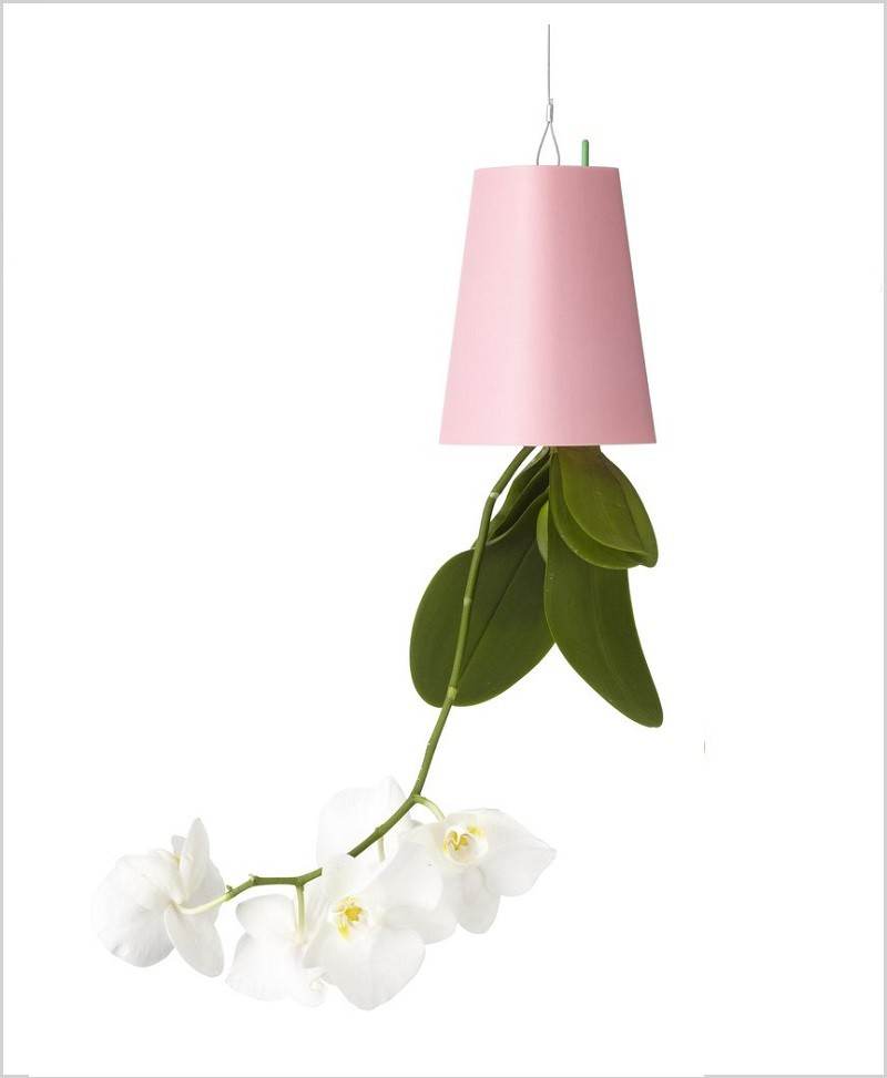 Buy Sky Planter (Inverted Planter - Upside Down Planter) - Pink Color