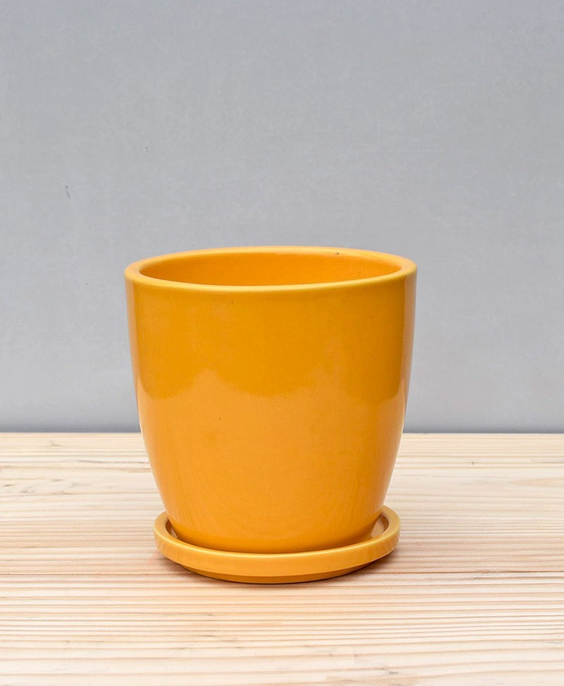 Ceramic 4 inch Oval Pot Mustard Yellow