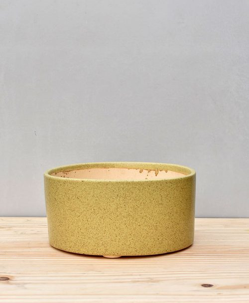 Ceramic Bonsai Tray Round 10 inch Pastel Green 2