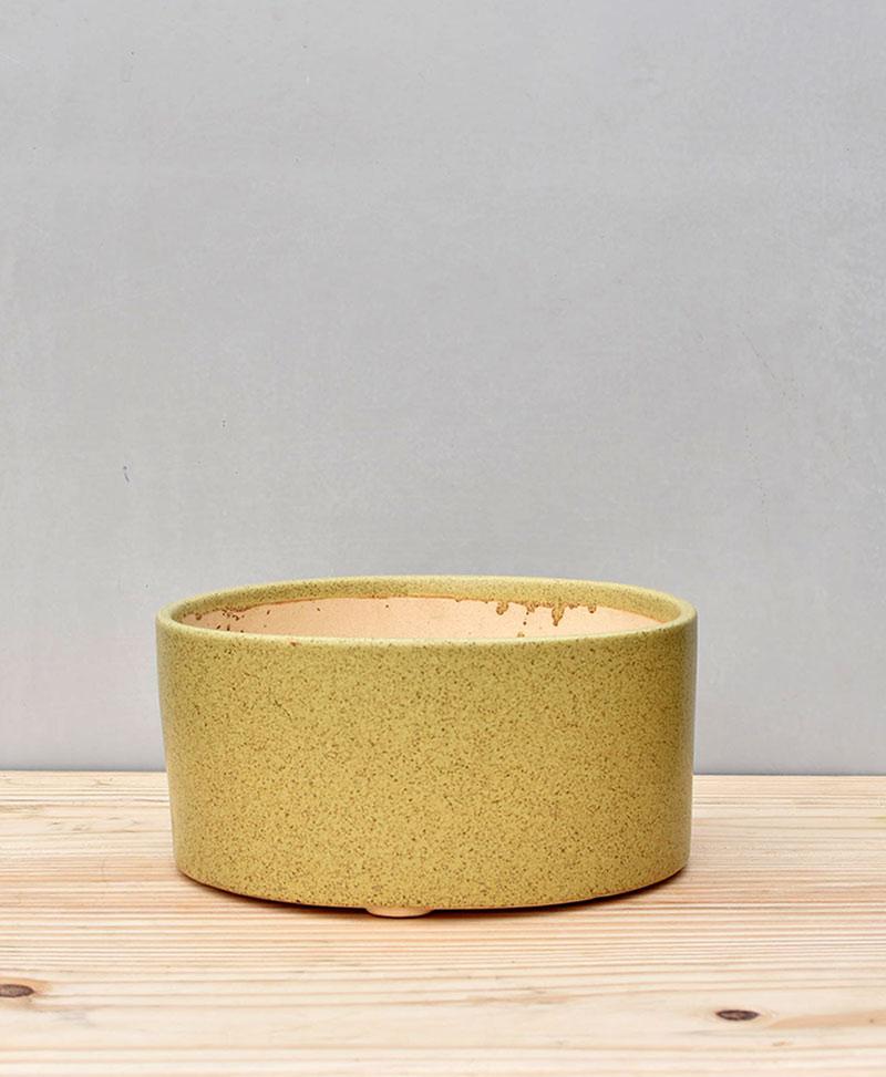 Ceramic Bonsai Tray Round 7 inch Pastel Green