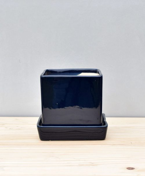 Ceramic Cube 4 inch with Plate Navy Blue 1