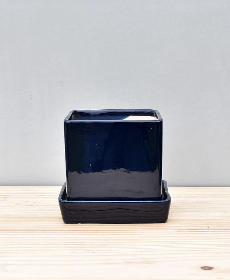 Ceramic Cube 4 inch with Plate Navy Blue